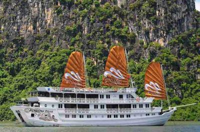 ?? Paradise Peak Cruise