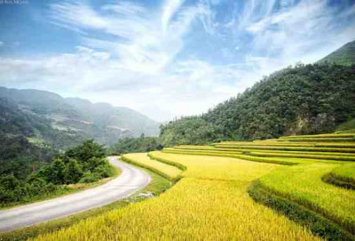 Best Vietnam Tour