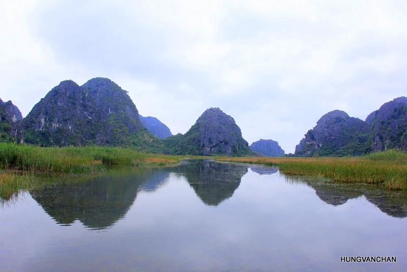 Discover Van Long Wetland Nature Reserve in Ninh Binh