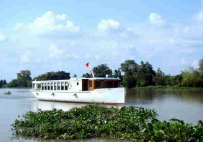 Co Saigon River Yatch to Can Gio mangrove forest