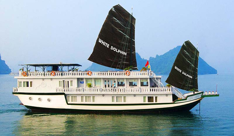 White Dolphine Cruise
