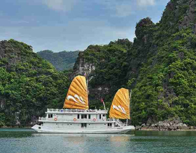 ?? Paradise Privilege Cruise 3 Cabins