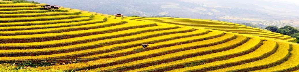 Vietnam Top Tourist Attractions