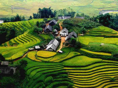 Sapa Special trek from the remote village 2 nights homestay