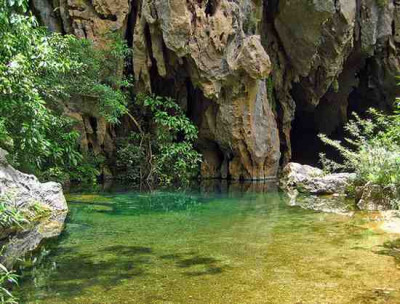 Bach Ma National Park Full Day Tour